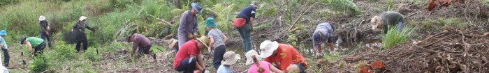 cropped-bushcare-planting.jpg
