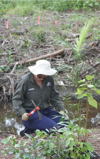 MBRC Bushcare officer Nicole Byrne prepares the ground for planting alongside a stream in the Dawn Road Reserve.