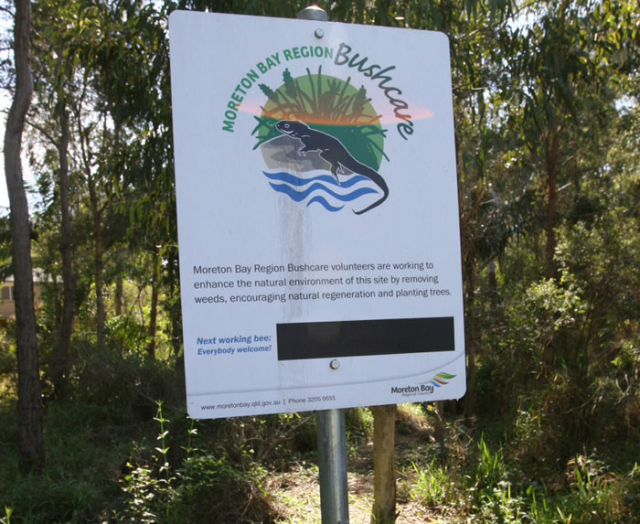 If you enter the Reserve from the south-eastern end of Fred Campbell Drive, you'll see the Dawn Road Reserve Bushcare sign, which will be updated with the next time and place to gather.