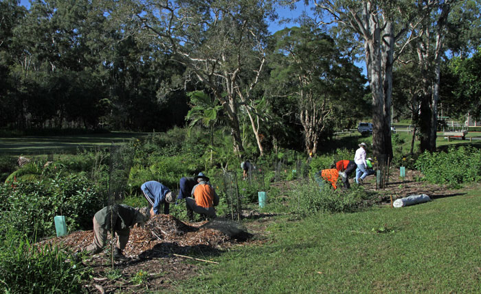 Dawn Road Reserve Bushcare volunteers in action on Sunday, April 12.