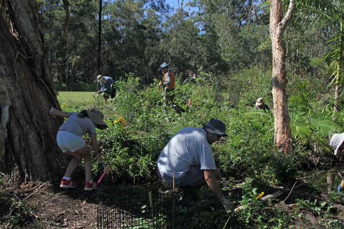 Children and adults all pitched in during the Dawn Road Reserve Bushcare April working bee