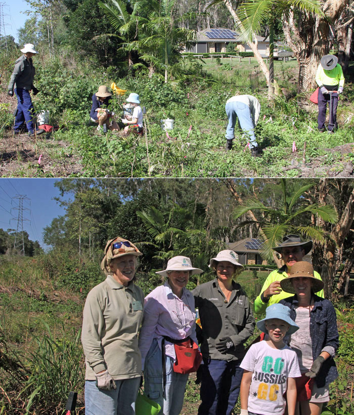 This happy band of Bushcare volunteers worked on the eastern bank of a stream running through the western edge of the Dawn Road Reserve on Sunday, March 15