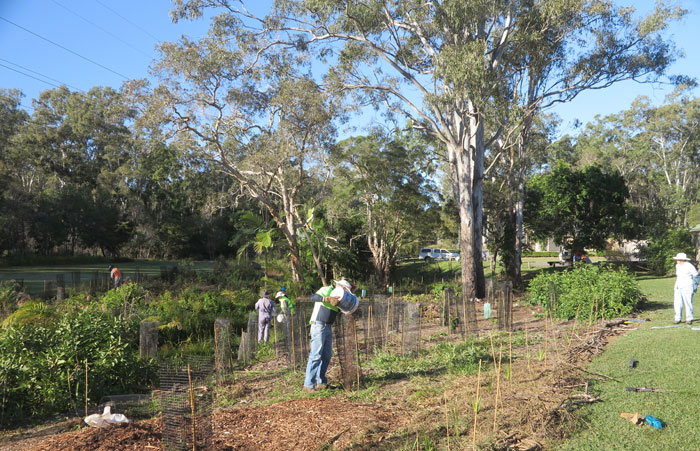 Dawn Road Reserve Bushcare volunteers check out the streamside planting