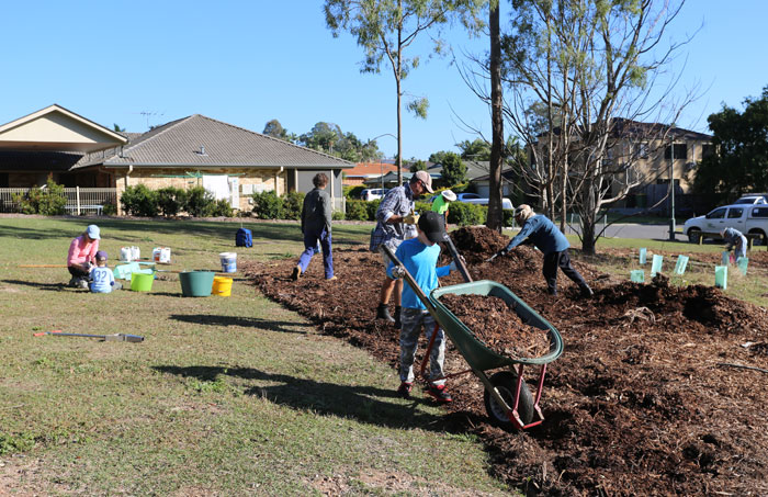 A young volunteer steers a barrow full of mulch to be spread out at the revegetation site.