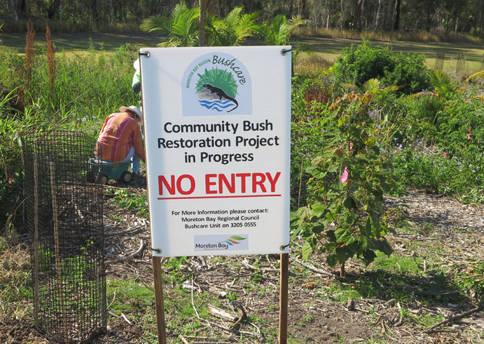With the arrival of spring, the Dawn Road Bushcare Group finally saw signs erected in three places to warn off anyone not working on the revegetation project. This will allow the zone's introduced plants to get established.