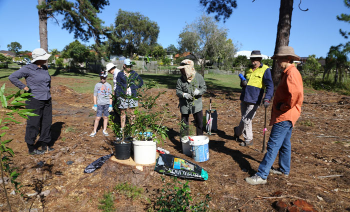 Despite the heat, the February Dawn Road Bushcare Group got down to work with lots of enthusiasm