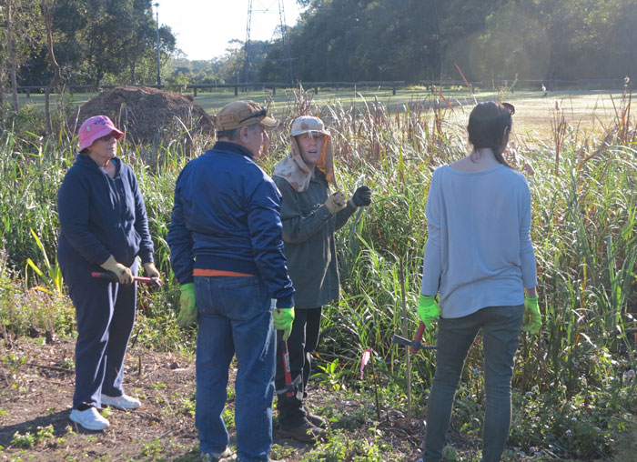 The Dawn Road Reserve Bushcare group's patron, Janet Mangan, takes a group of new volunteers through some of the features of the newest revegetation site.