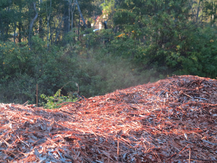 When the Dawn Road Reserve Bushcare group arrived on a crisp May morning, the mountain of woodchip awaiting spreading was so warm that it was steaming
