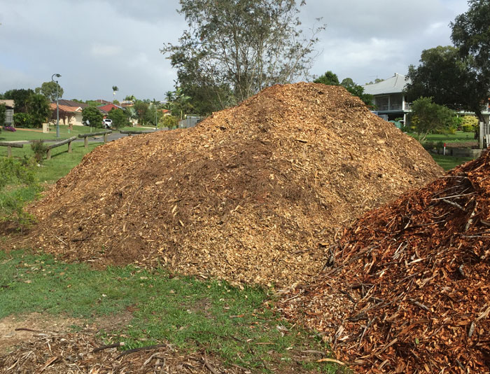 Just two of several sizeable piles of woodchips left on the Dawn Road Reserve that will be used across the revegetation areas