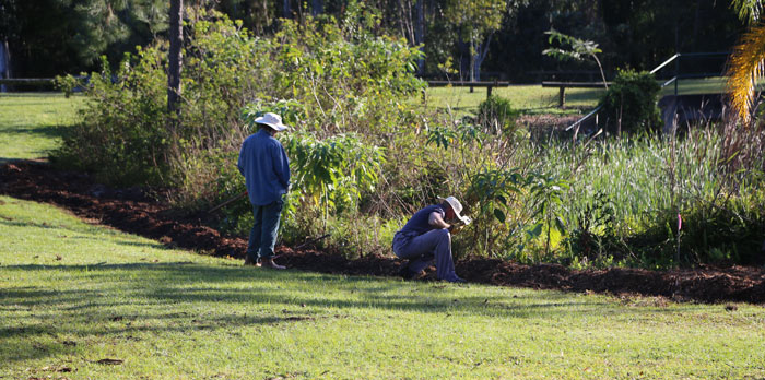 Volunteers Michael and his dad, Gary, take care of planting along the northern end of the regeneration patch